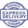 Piktogramm_ExpressDelivery_klein